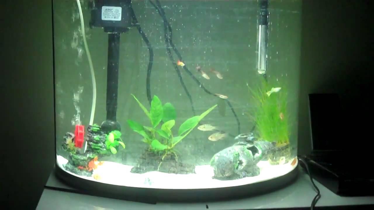 Jebo aquarium fish tank sale - Jebo Tank Jebo Aquarium Canister Filter 828 2017 Fish Tank Maintenance