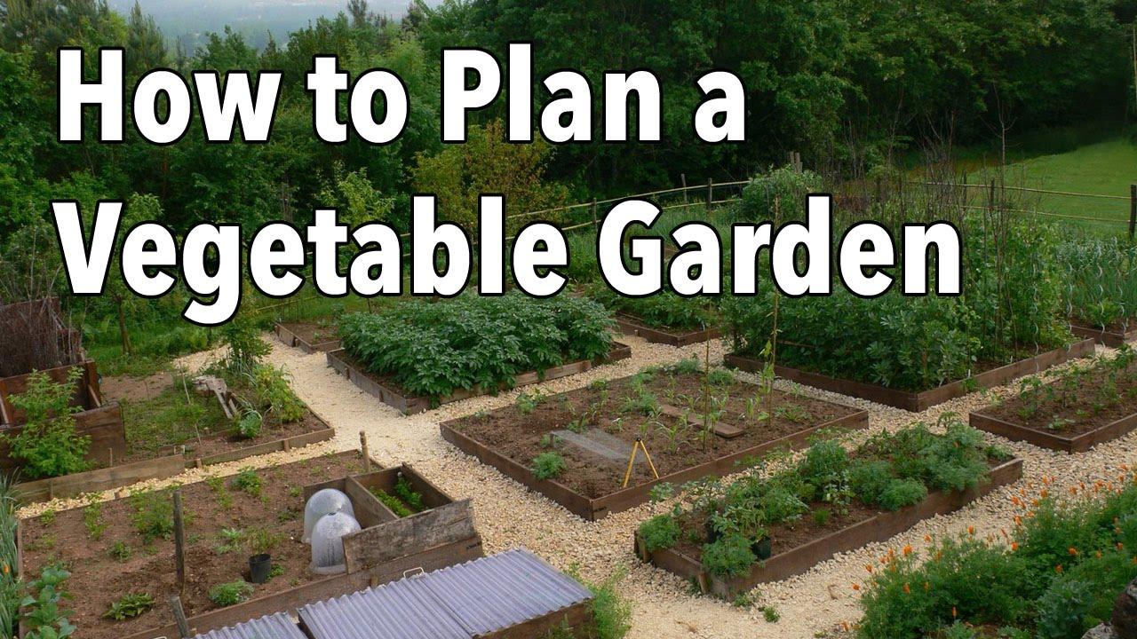 How to Plan a Vegetable Garden: Design Your Best Garden ...
