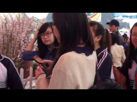 [Anh 2] Hoa Anh Đào + Nhà Huyền