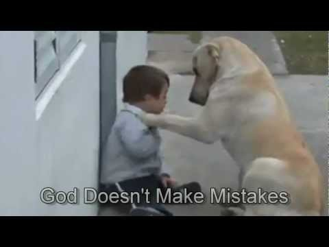 Sweet Mama Dog Interacting with a Beautiful Child with Down Syndrome. From Jim Stenson.,