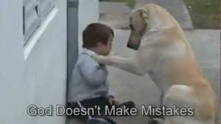 Sweet Mama Dog Interacting With A Beautiful Child With