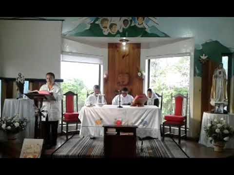 Santa Missa | 11.11.2020 | Quarta-feira | Padre Francisco de Assis | ANSPAZ