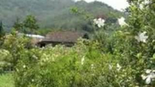 Bukit Berbunga - Uci Bing Slamet.mp4 view on youtube.com tube online.