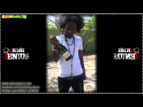 Popcaan - When Mi Party [Summer Wave Riddim] May 2012