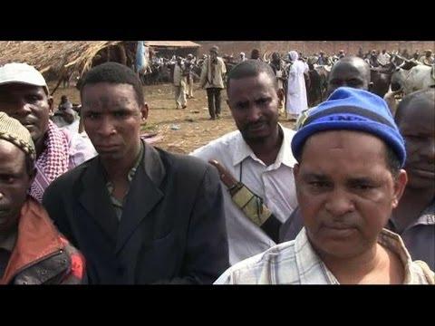 Centrafrique: des peuls demandent l'impartialité de la France