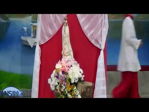 Santa Missa | 11.05.2021 | Terça-feira | Padre João Paulo | ANSPAZ