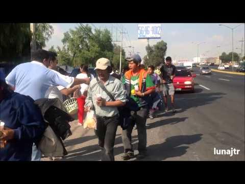 Hình ảnh trong video Peregrinos rumbo a la Basílica de Guadalupe