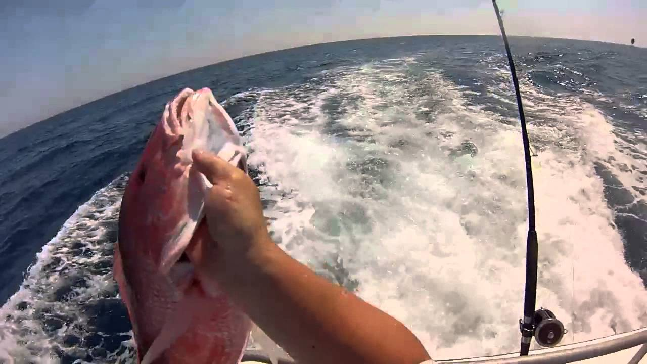 Red snapper savannah ga fishing may 2013 youtube for Georgia out of state fishing license