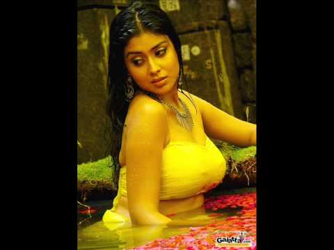 hottest tamil actress Shriya
