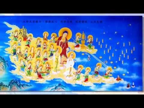 Con Nay Quy Y Đức Phật A Di Đà (Văn Phát Nguyện)