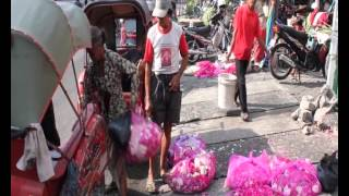 dolan dolan pasar kembang solo view on youtube.com tube online.