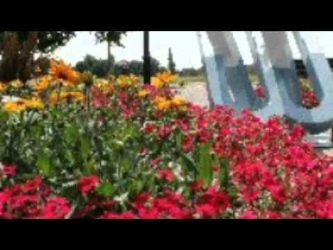 Promenade Park Maldon Essex