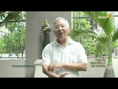 Đạt-Ma Dịch Cân Kinh (cải cách)