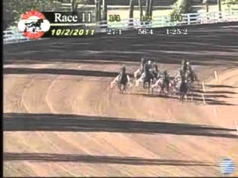 Manofmanymissions - Kentucky Futurity 2nd heat