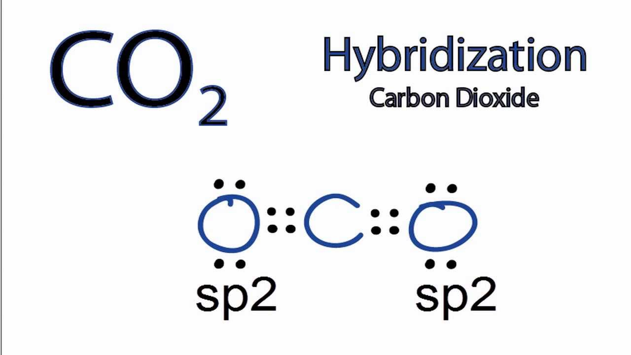 Co2 Hybridization  Hybrid Orbitals For Co2