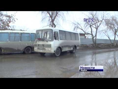 На весенних каникулах школьники Бердска могут бесплатно ездить на муниципальных автобусах