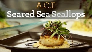 Seared Sea Scallops Recipe - Inside My Kitchen
