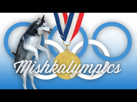 Mishka's Olympic Trials - Trick Time, Mishka and her sisters are READY for the 2012 Olympics -- Are you?? What's your favorite Olympic sport? MORE MISHKA AND FAMILY!! Mishka's Facebook: http://ww...