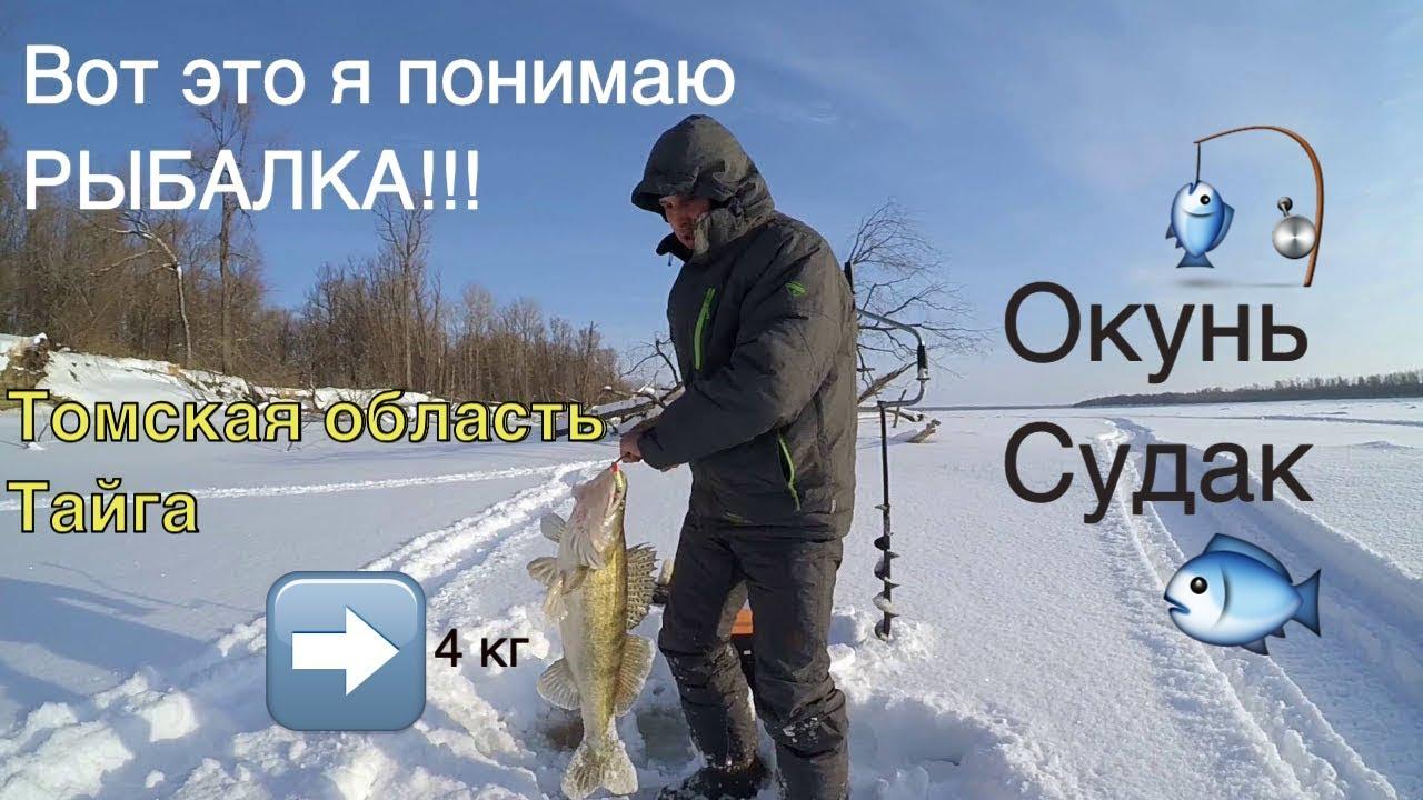 каргасок охота и рыбалка