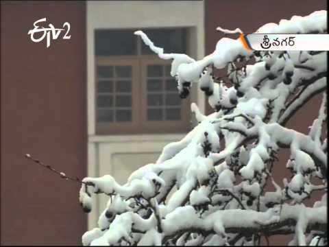 Snow Fall In Srinagar