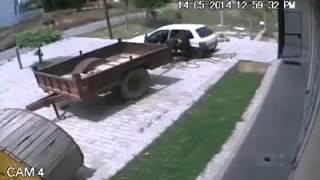 O sequestro da vaquinha!