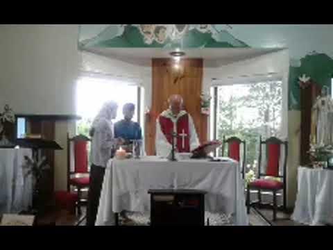 Santa Missa | 28.12.2020 | Segunda-feira | Padre José Sometti | ANSPAZ