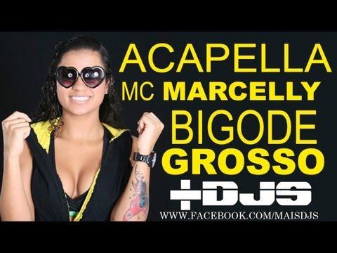 Acapella Mc Marcelly Bigode Grosso