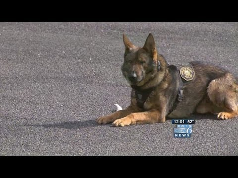 K-9 Mick 'made the ultimate sacrifice'
