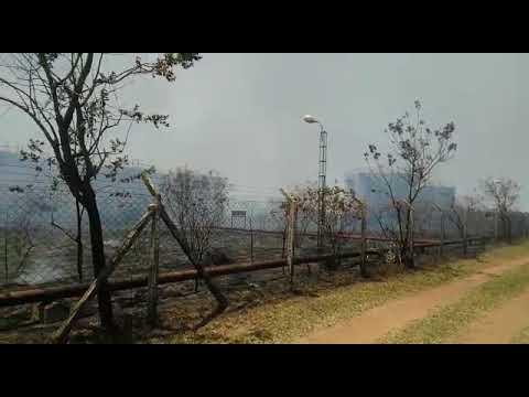 Vídeo Vídeo: Incêndio gigante destrói área ao lado de antigo depósito de combustíveis na região do Embaré