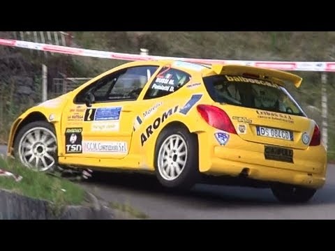 Rally Coppa Valtellina 2013