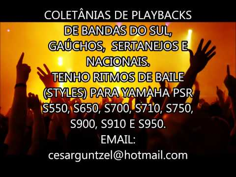 PLAYBACKS DE BANDAS DE BAILE DO SUL