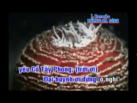 KARAOKE.Dao Hoa Khach (ft)
