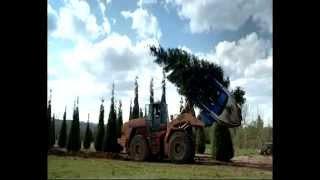 Conservar el medio ambiente con transplantador de árboles OPTIMAL