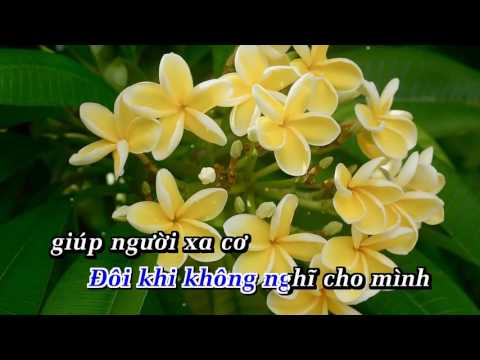 THUA MỘT NGƯỜI DƯNG KARAOKE NHAC SONG   DƯƠNG NGỌC THÁI