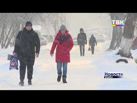 Коронавирус в Новосибирской области: итоги недели