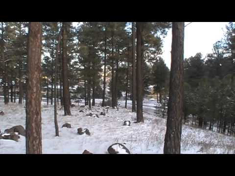 Icy Roads Accident on South Plaza Way Dec 4, 2013 Flagstaff