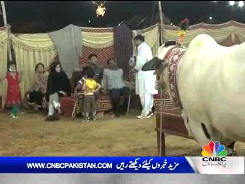 News Hour Oct 17, 2012 Part 02