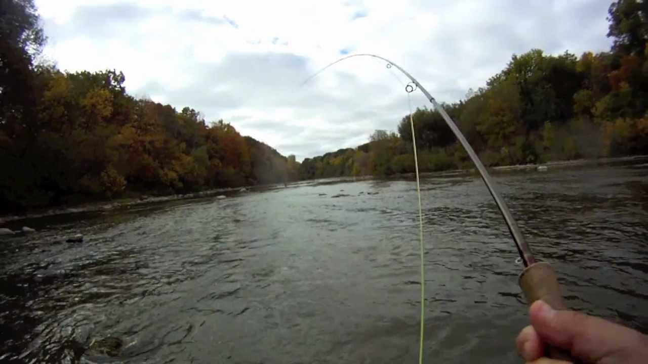 Ecuador fly fishing milwaukee river salmon season 2012 for Milwaukee river fishing