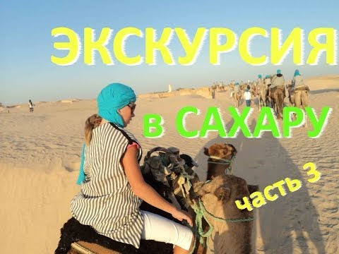 Тунис - Экскурсии в Тунисе - Экскурсия в Сахару - На верблюдах по пустыне - экскурсии 2013