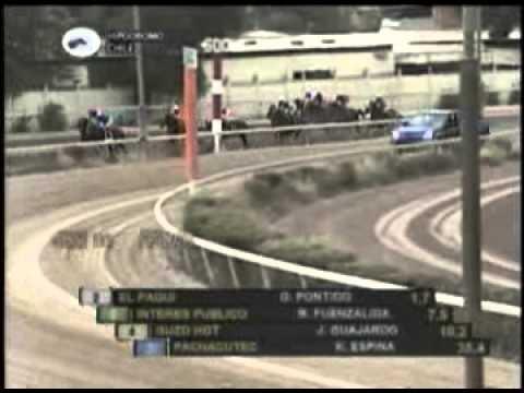 Vidéo de la course PMU CHALECO STAKES