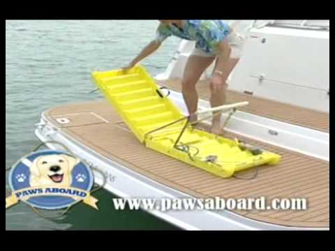 Paws Aboard Doggy Boat Ladder Youtube