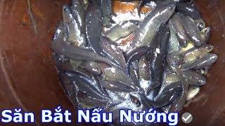 Mưa rước cá bắt toàn rô mề - Săn bắt nấu nướng