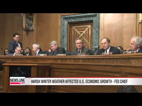 Fed's Yellen says harsh weather played role in slow economic growth