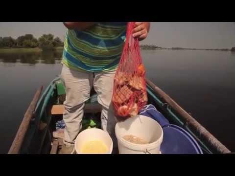 видео рыбалка поймать леща
