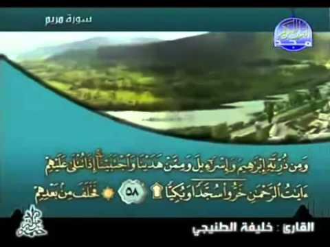 complete Quran Juz' 16 Shaikh Khalifa al Tunaiji