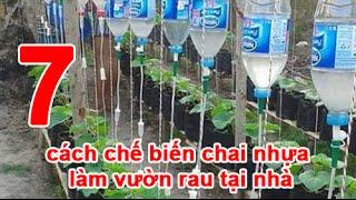 7 cách chế biến chai nhựa làm vườn rau tại nhà
