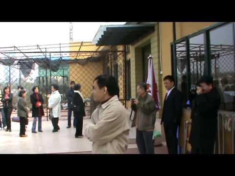 Ho hang gap mung xuan 2010.mpg