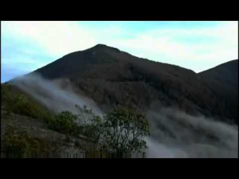 A Little Spot In Heaven Johnny Marks - YouTube