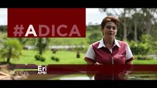 Senepol #ADICA – Ep. 01