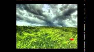 """Musical Tráfico """"musica Instrumental Romantica Saxo Y"""
